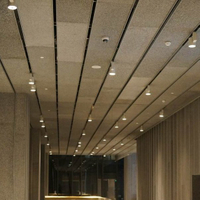 Aluminum Celling Foam for Hotel, Hospital And Meeting Rooms