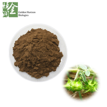 Saponins Tribulus Terrestris Extract Male Sexual Enhancement