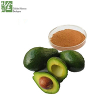 Weight loss avocado fruit juice powder/avocado powder/persea americana extract powder