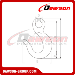DS257 Forged Alloy Steel Eye Hook