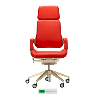 Ergonomic Office Chair 869A