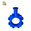 Ductile Iron Double Eccentric Butterfly Valve parts