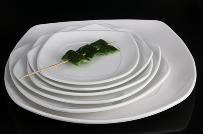 Melamine Dish Dinnerware with Good Quality From China (TP-3108)