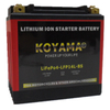 12.8V 6ah LiFePO4 Motorcycle Battery LFP14L-BS