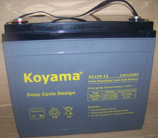 Golf, Utility Vehicle And NEV Deep-Cycle AGM Battery
