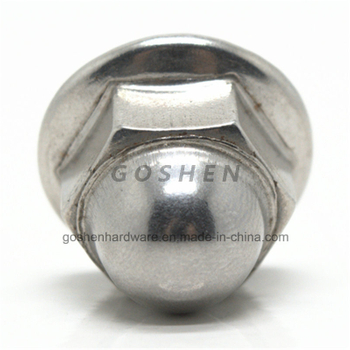 Stainless Steel M8 Hex Flange Cap Nut