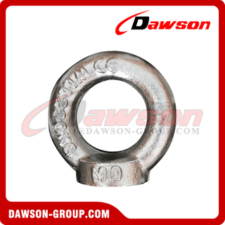 Stainless Steel 316 Drop Forged DIN582 Lifting Eye Nut