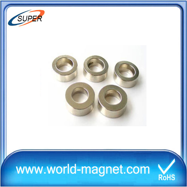 Ring Industry Rare Earth Neodymium Magnet