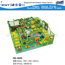Amusement Park Jungle Theme Kids Indoor Playground For Sale(HD-9203)