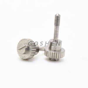 Stainless Steel slotted Positioner screw