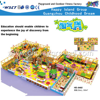 Kids Large Lovely Indoor Naughty Castle Playground(HD-8402)