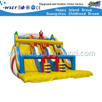 Outdoor Large Inflatable Slide Playsets for Amusement Park (HD-9605)
