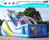 Outdoor Commercial Inflatable Slide Equipment for Kids Play