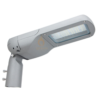 50W IP66 Adjustable Angle 150LM/W Led Garden Street Light