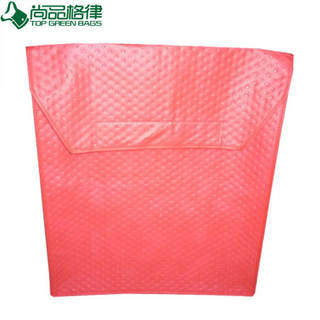 Red High Quality Pizza Warmer Bag (TP-PB014)