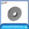 Supplier Ring Magnet Neodymium and permanent magnets